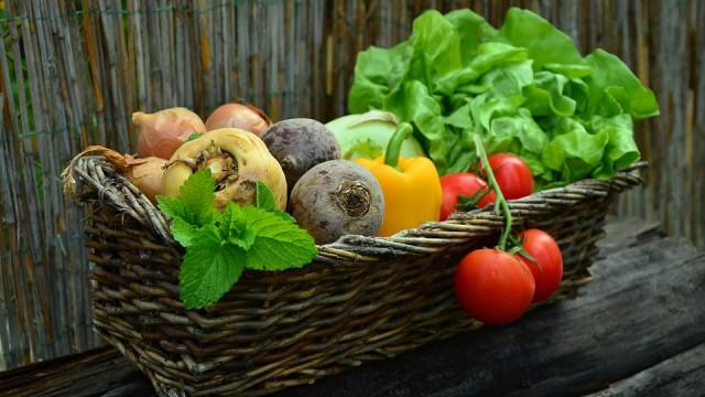 warzywa2