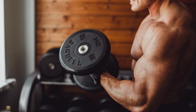 siła mięśni
