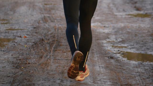 biegacz-zimą