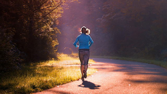 biegaczka-w-lesie