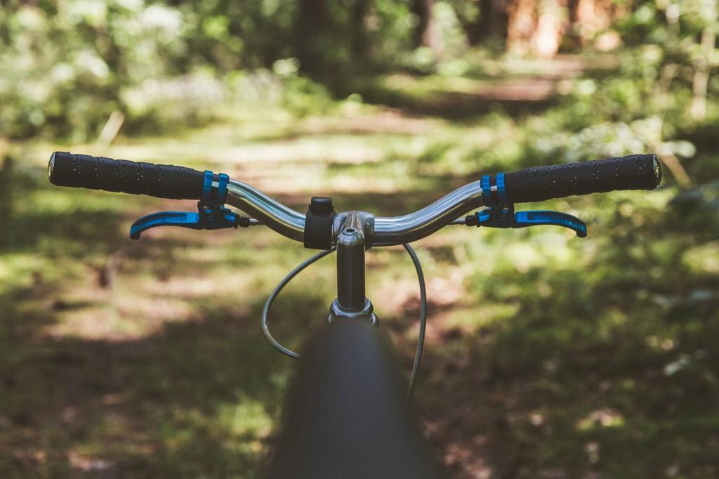 rower w lecie