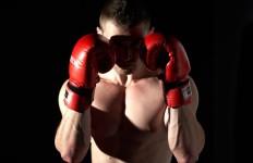 bokser`