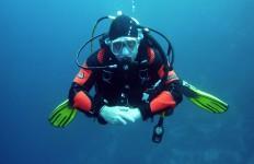 nurkowanie 3